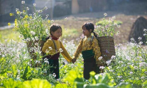 Sapa Children